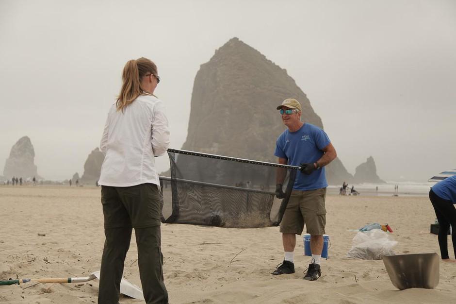 cannon beach microplastics cleanup